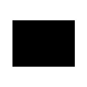 DynafitLogo