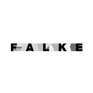 FalkeLogo